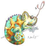 Chameleon_s