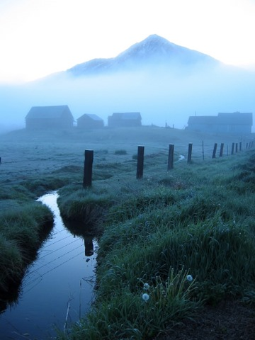 Stream in the Mist