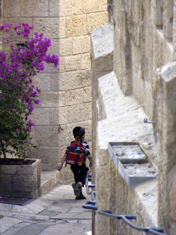 Boy going to school in the Alley of Flowers